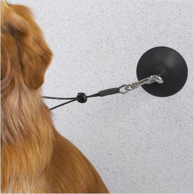 7 95 4 73 Top Performance Suction Cup Dog Grooming Supplies