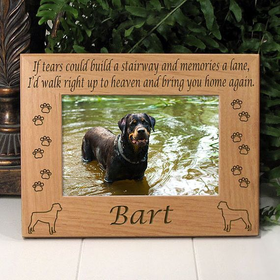 Rottweiler Dog Memorial Frame | Memorial Pet Frames for all Pets ...