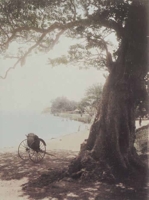 Unknown Japanese photographer, ca. 1890   Waterfront of Lake Hakone / Japan