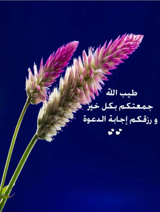 أدعية وصور يوم الجمعة تقدم للاحبه والأصدقاء تهنئة فوتوجرافر Morning Greeting Blessed Friday Arabic Love Quotes