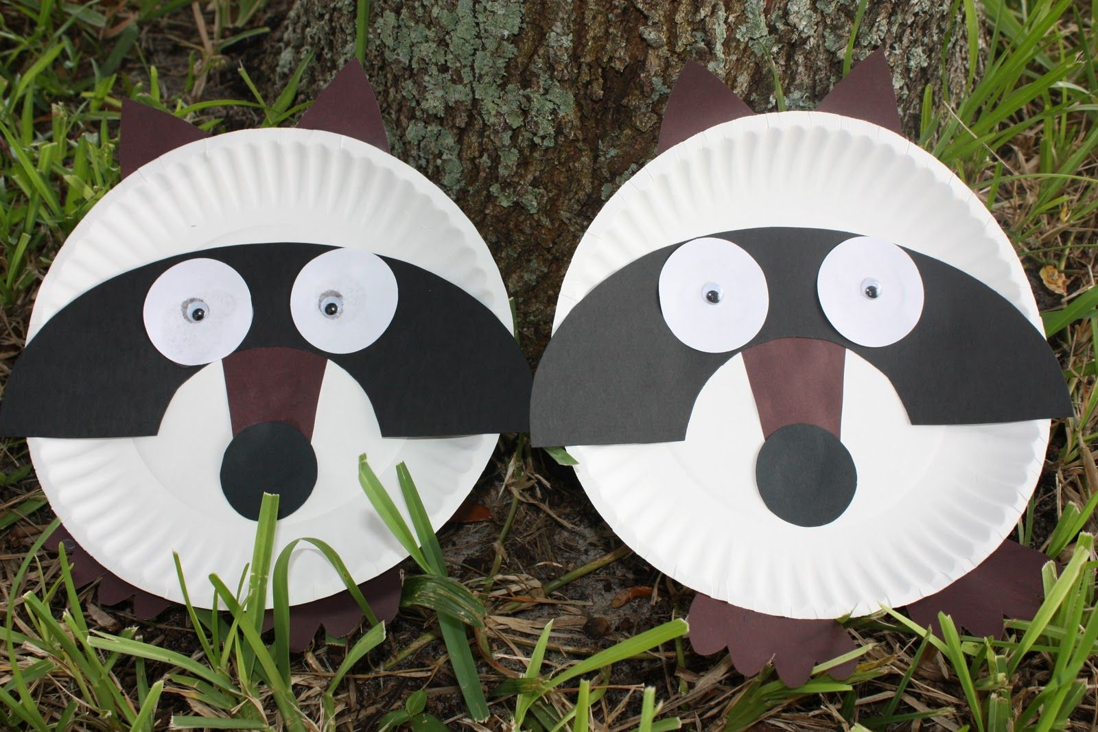 Paper Plate Raccoon Crafts
