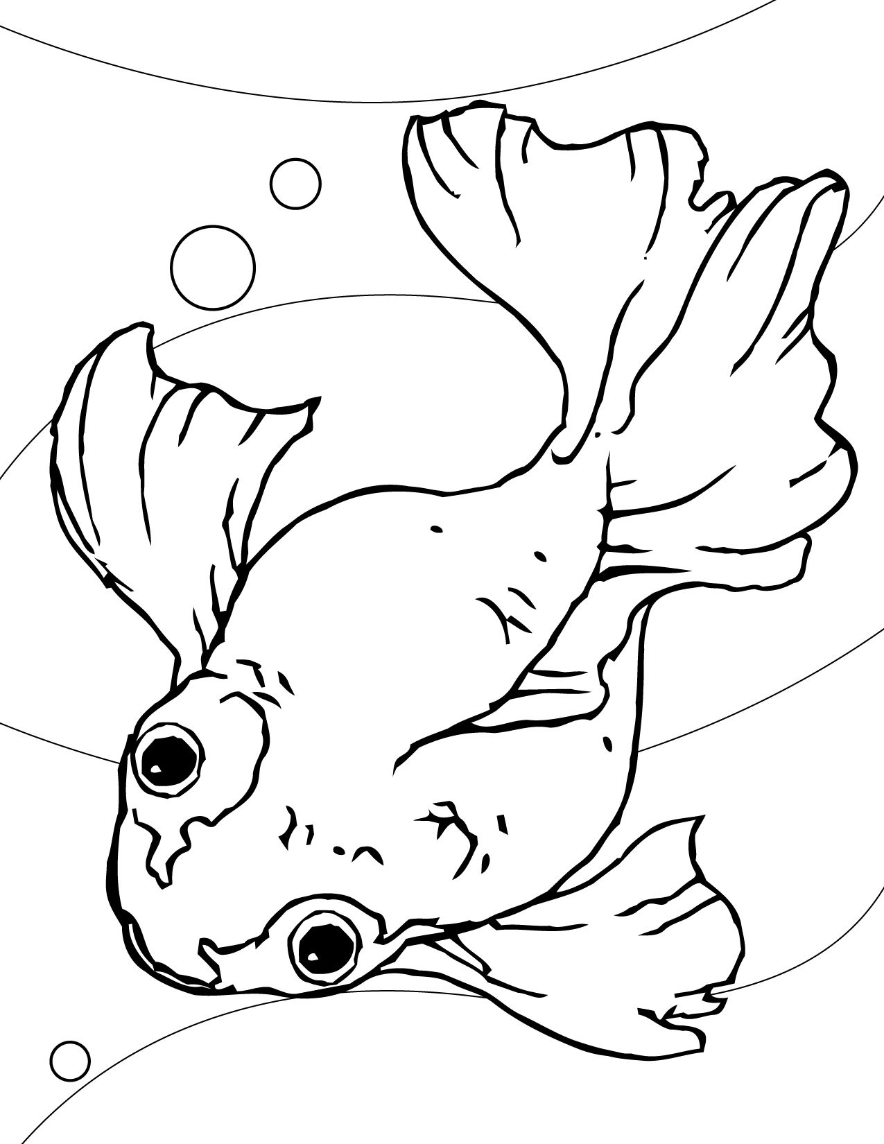 fish coloring pages for kids printable - Printable Fish Coloring Pages