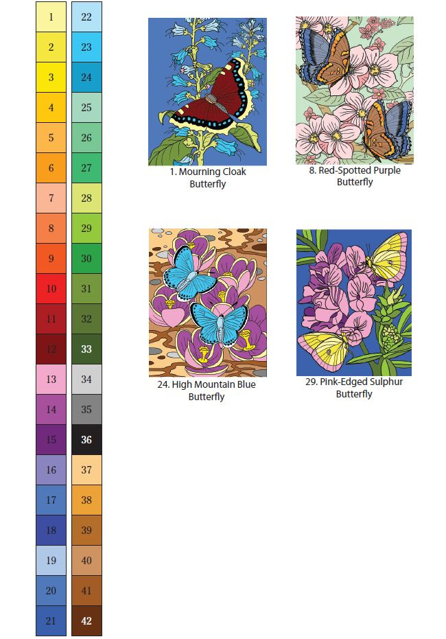 Creative Haven BUTTERFLIES COLOR