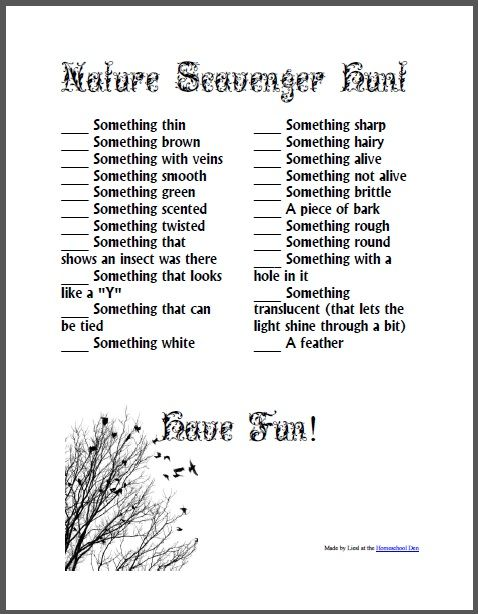 """""""Nature Scavenger Hunt"""" by Lisa Den... ~This looks like a fun Kindergarten activity for a summertime prelude into nature/earth/biology science."""