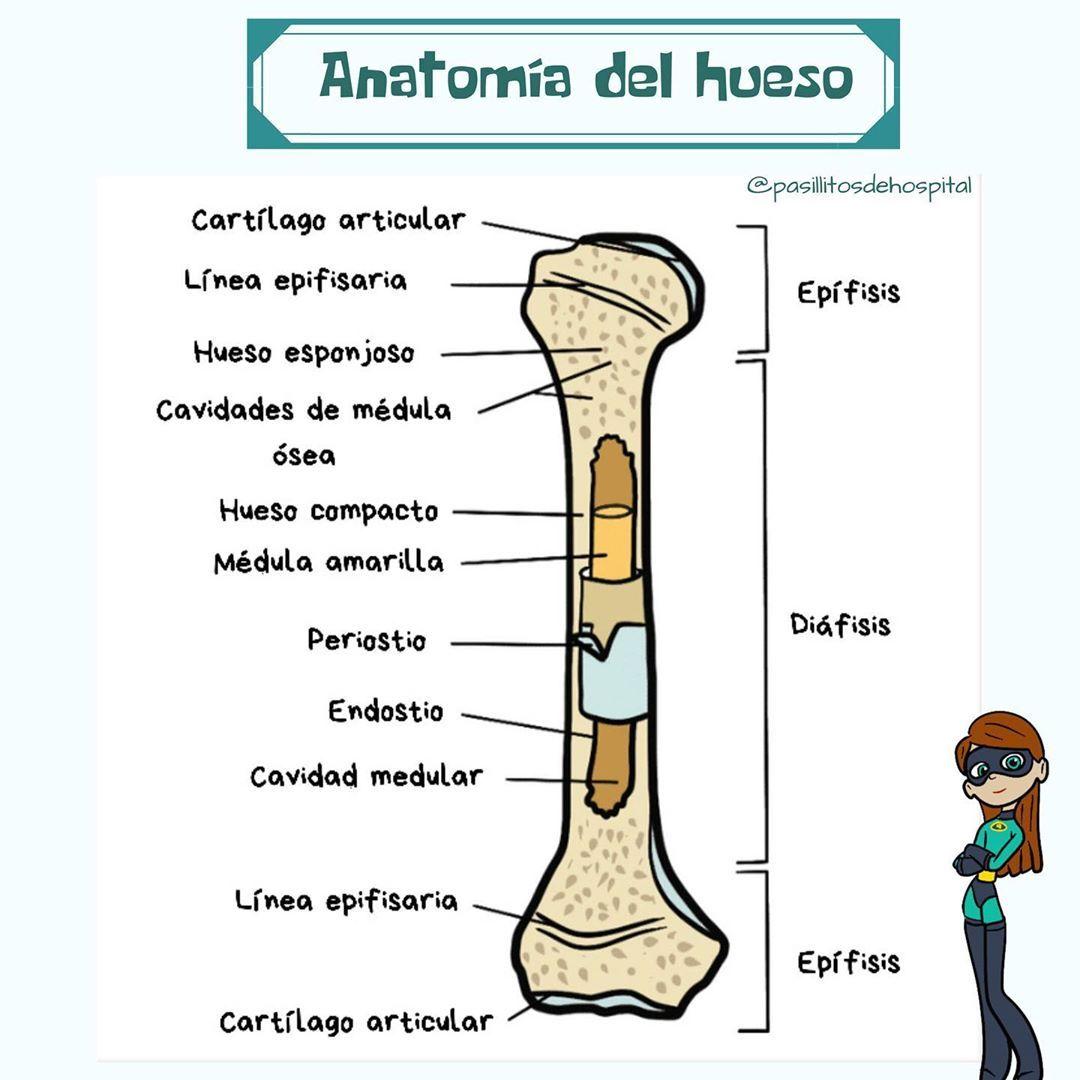 odihniți vă acolo unde sunt tratate articulațiile artroza simptomelor articulației genunchiului drept