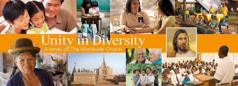 Diversity essay contest 2012