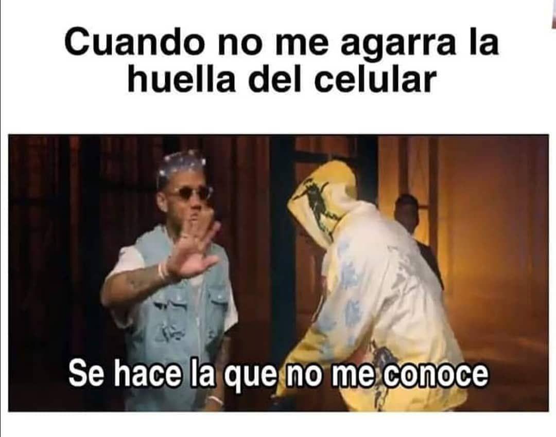 Memes Delicioso Ubereats Puebla Cholula Graciasporcomervegetales Dondeir Dondecomer Cocinacreativa Memes Meme Gracioso Memes Graciosos