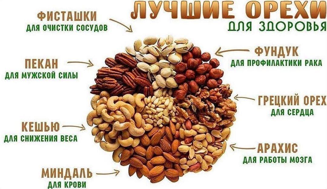 Какие орехи полезнее во время диеты