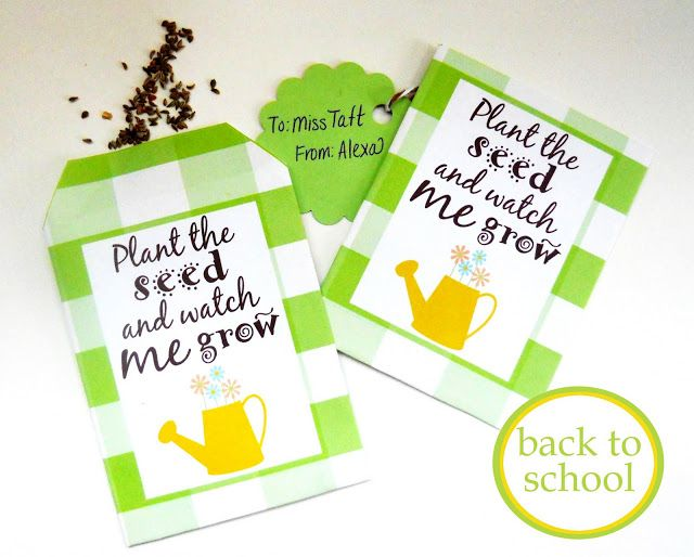 Teacher's Seed Packet