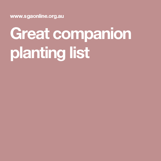 Rhubarb Companion Plants: Great Companion Planting List