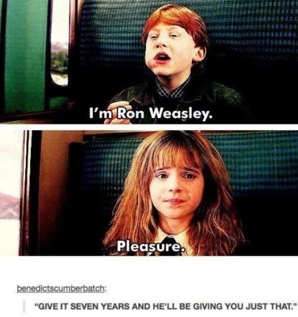 35 Funny Memes Pictures Harry Potter Memes Every Muggle Will Appreciate Harrypotterpictures Harry Potter Jokes Harry Potter Funny Harry Potter Series