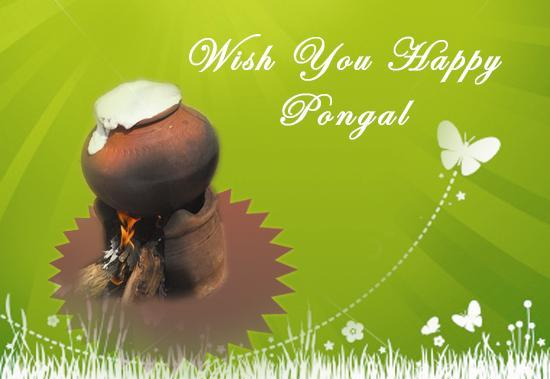 Happy pongal greetings pongal greetings wishes and pongal happy pongal greetings m4hsunfo