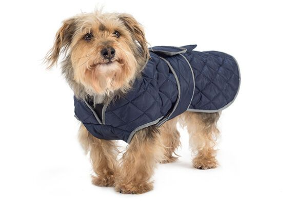 Ancol Muddy Paws Quilted Jacket Waterproof Warm Dog Coat