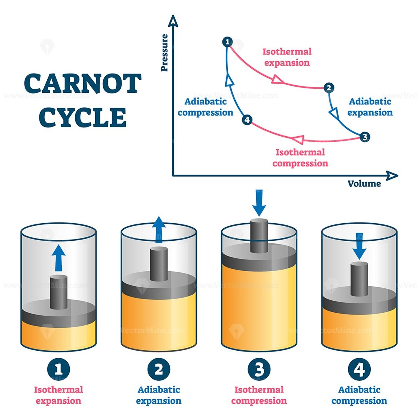 Carnot Cycle Vector Illustration In 2020 Vector Illustration Illustration Cycle