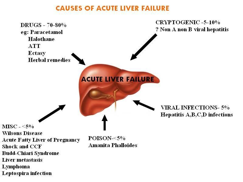 http://fattyliverdisease.co/liver-failure-stages.html The actual phases for liver failure discussed.