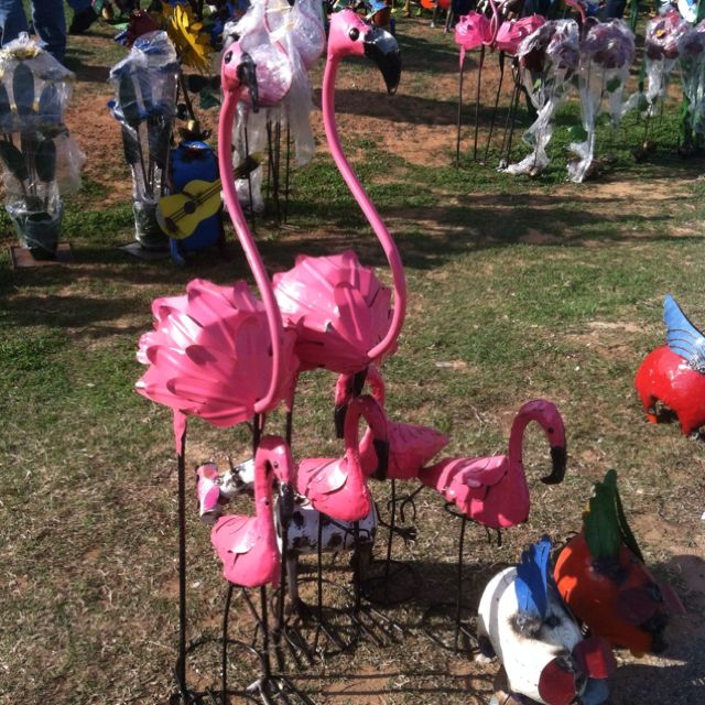 Another metal family | flamingo\'s | Pinterest | Flamingo, Pink ...