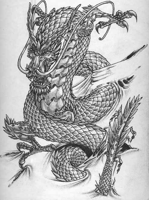 chinese dragons with flowers tattoos | chinese dragon tattoo1 |hd