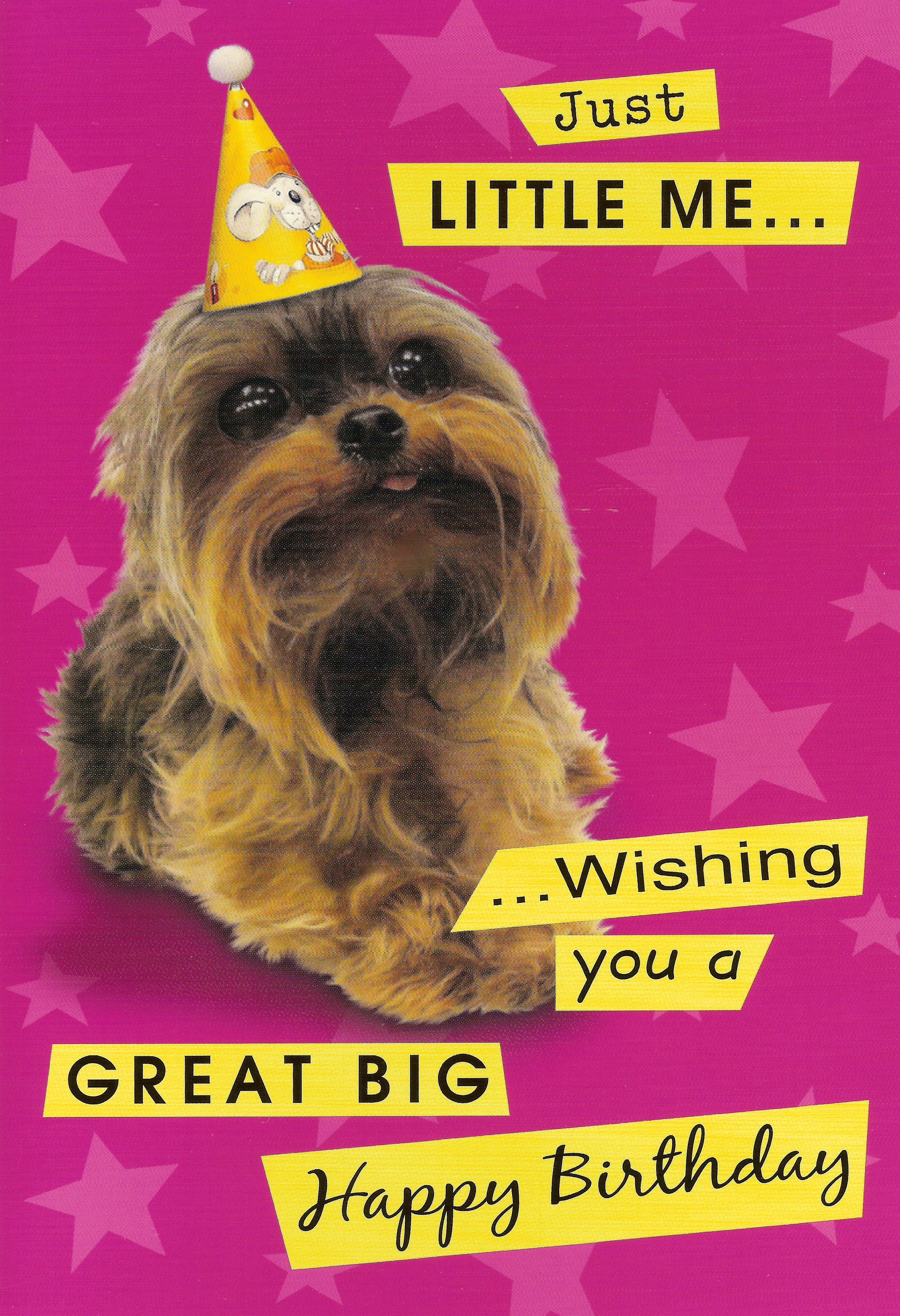 Yorkie Birthday Card Yorkie Birthday Party Pinterest