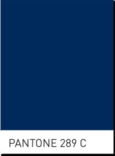 Pantone 289 for Navy? | Pantone, Blue interior design, Navy color palette