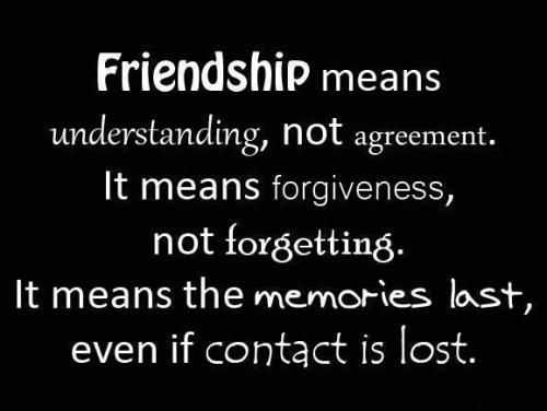 Wise Quotes About Friendship Fair 173570_20150415_043906_50497_Original1 500×376  My Shoes