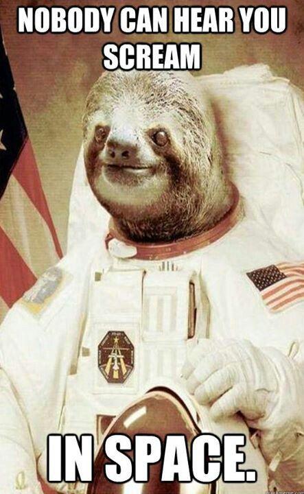 Rape sloth original - photo#44