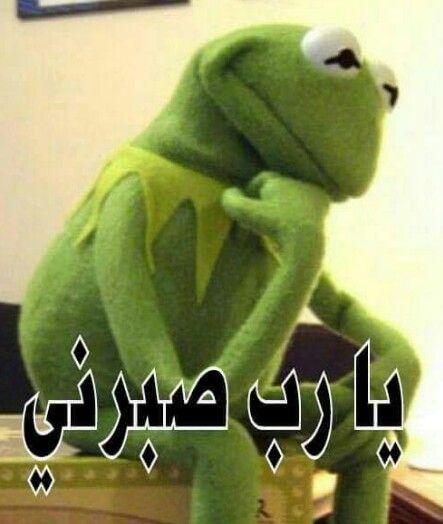 اللهم امين Funny Photo Memes Funny Reaction Pictures Funny Picture Jokes