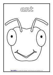 FREE Minibeasts Colouring printable Early Years/EY (EYFS) resource ... | 245x173