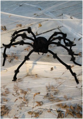 imageshalloweencostumes/products/12241/1-2/black-50 - halloween decorations spider