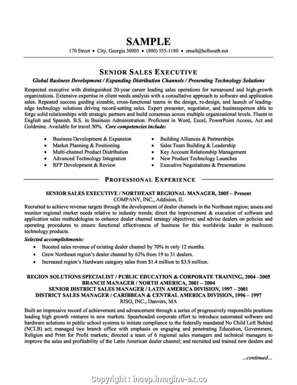 Senior Sales Executive Sample Resume Senior Sales Executive