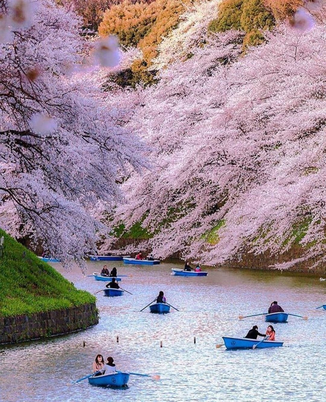 Pin By Aureliana Santos On Asia Beautiful Places To Visit Amazing Travel Destinations Tokyo Photos