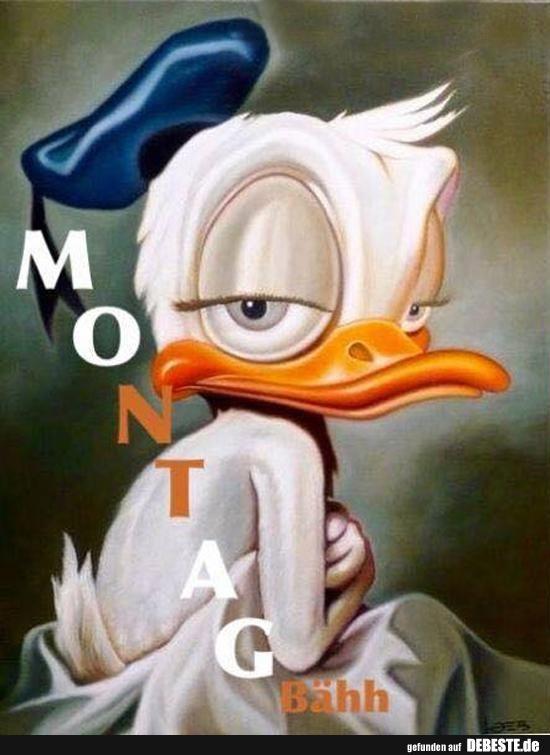 Montag..   Lustige Bilder, Sprüche, Witze, echt lustig #recipeforchickenfajitas