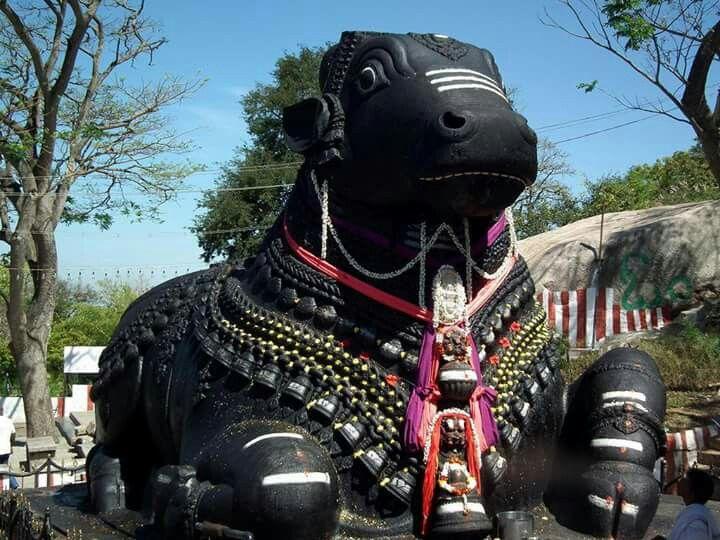 Nanthi Temple Luxury Tours South India