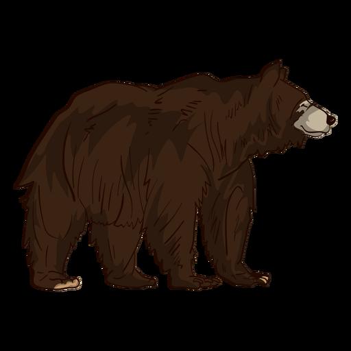 Brown Grizzly Bear Cartoon Ad Sponsored Sponsored Grizzly Bear Cartoon Brown Bear Cartoon Grizzly Bear Cartoon