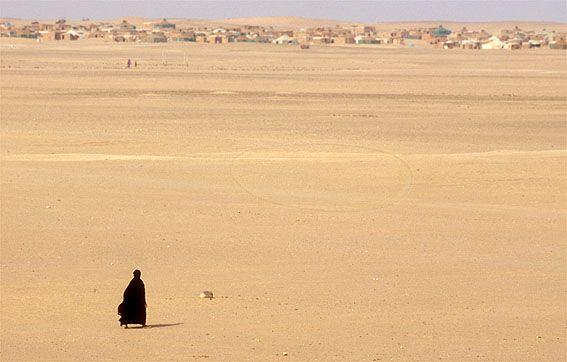 Campos De Refugiados Cerca De Tindouf En Pleno Desierto Argelino Sahara