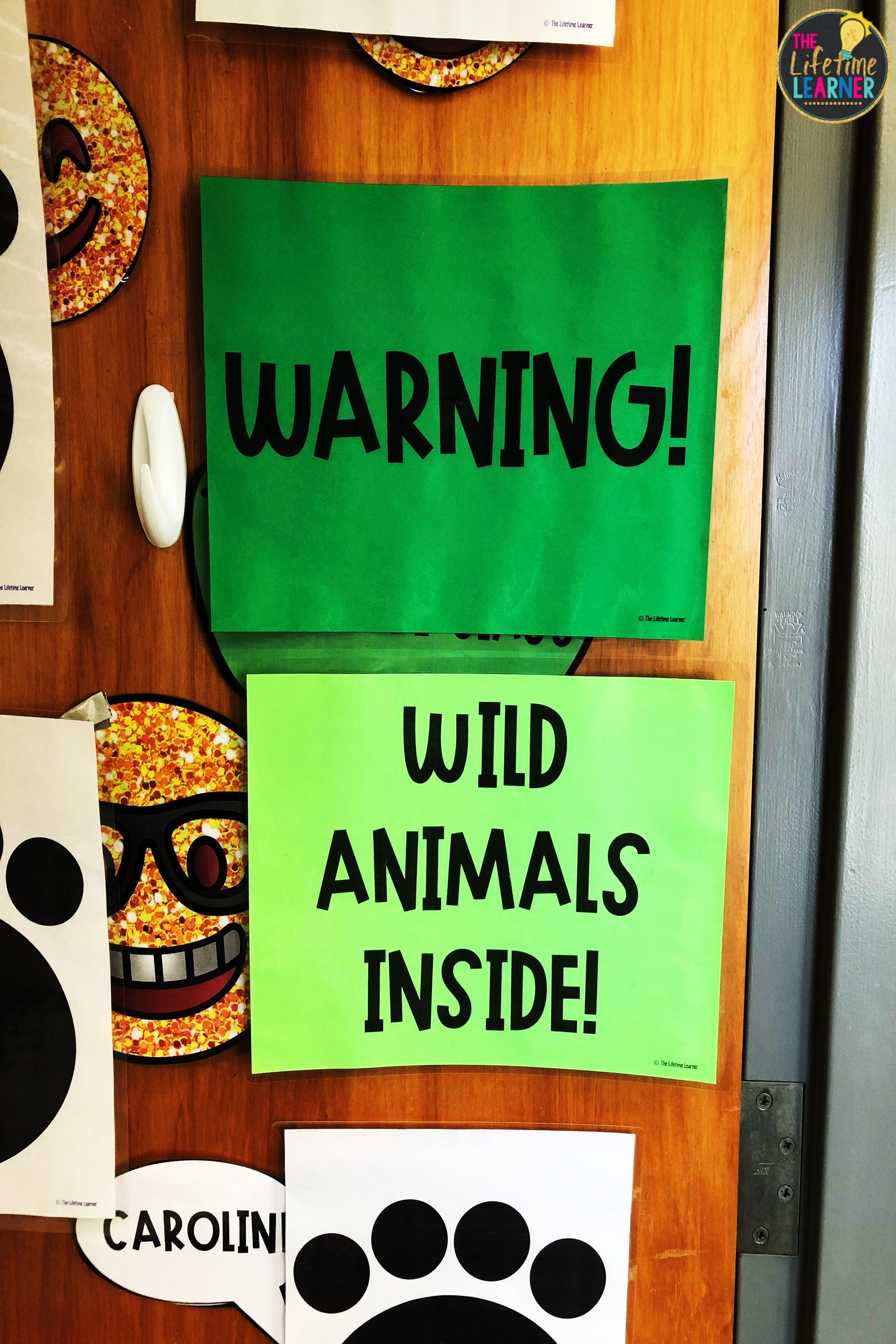 Check Out This Fun Safari Classroom Transformation For 3rd