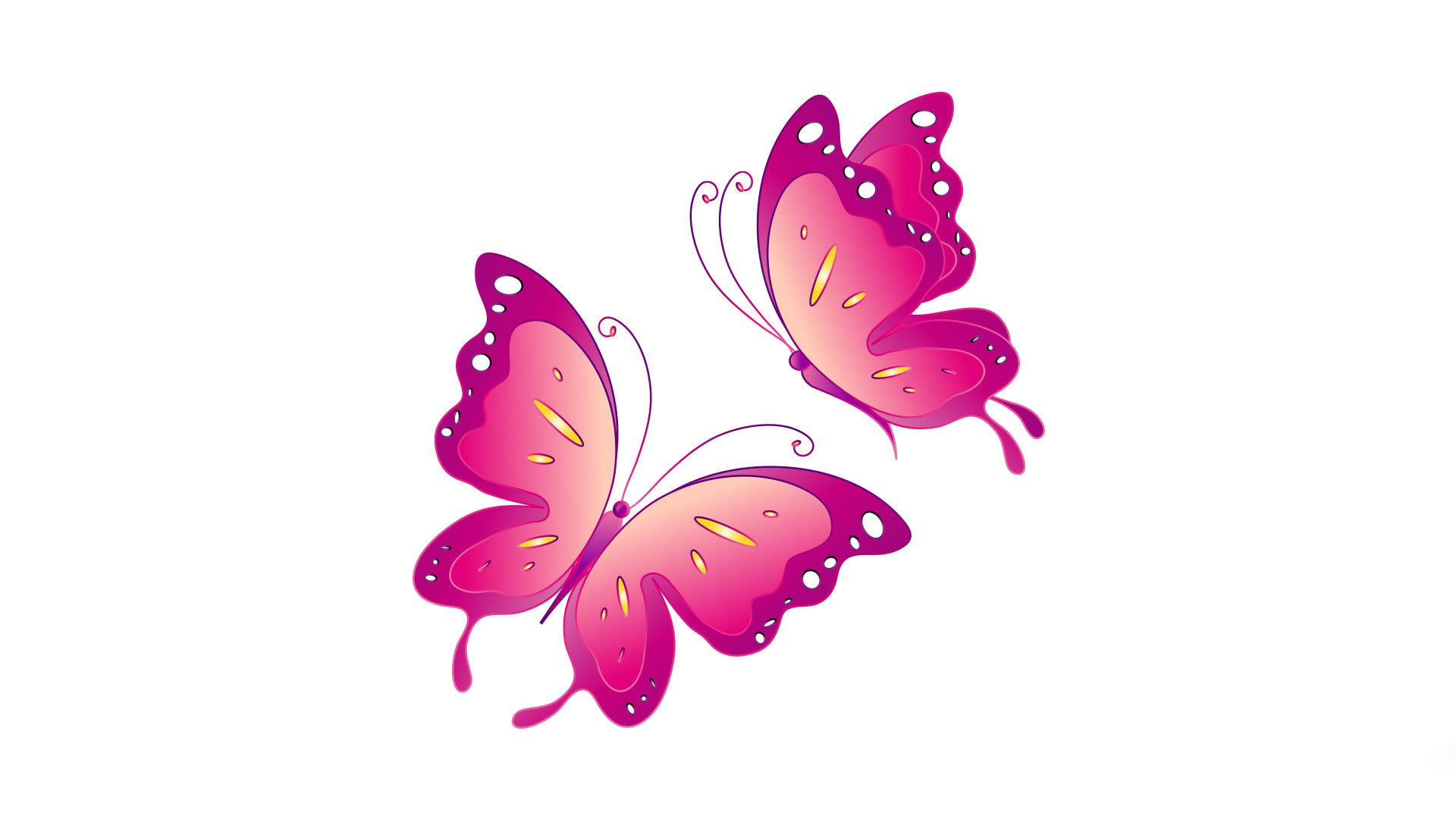 Pink Butterfly Wallpaper High Quality Resolution ...