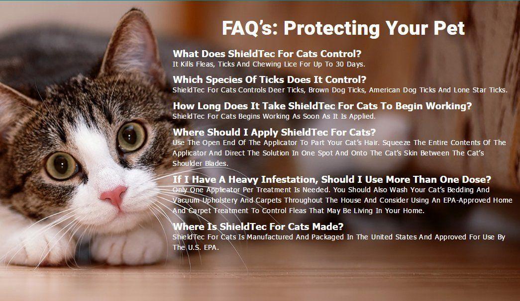 Flea Drops Kills Fleas And Eggs Protection Adventure Plus Ad Kills Affiliate Drops Flea Fleas Cat Fleas Cats Brown Dog Tick