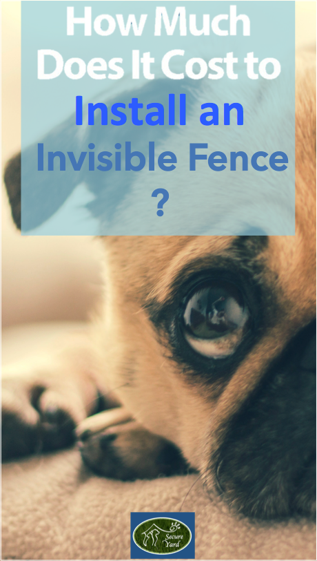 How much does it cost to Install an Invisible Fence