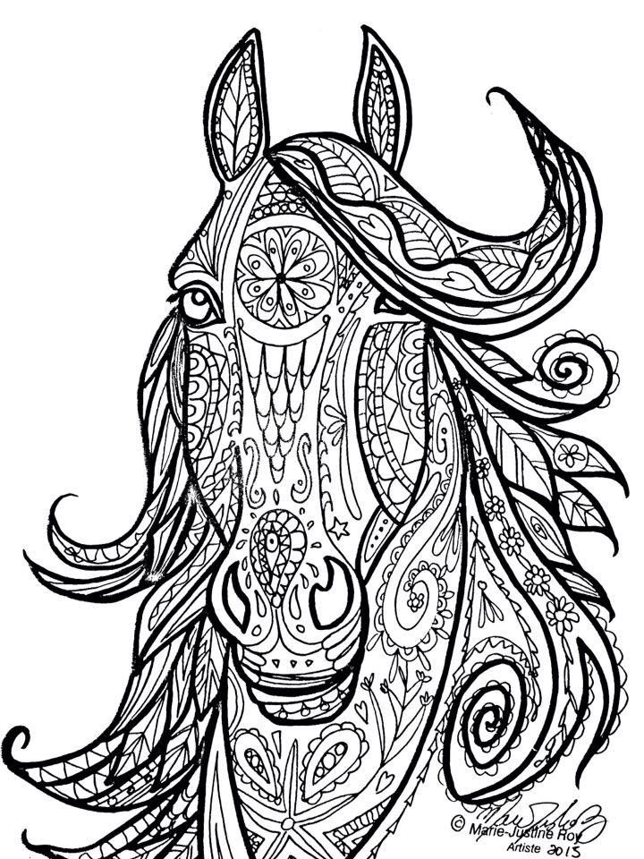 Horse Tribal Head Art By Marie Justine Roy Lineart Illustrator And Artist