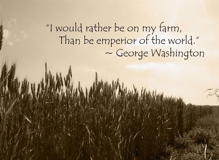 Farm Quotes Glamorous Family Farm Quotesquotesgramquotesgram  Rick Holzer