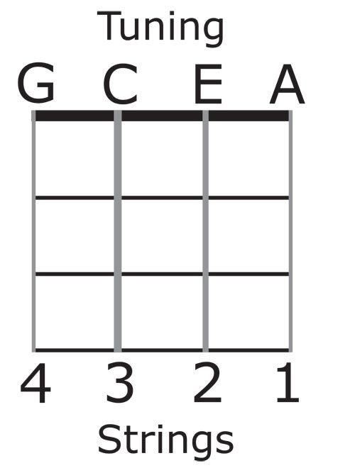 view source image ukulele pinterest rh pinterest com Ukulele Strings Tuning Ukulele String Placement