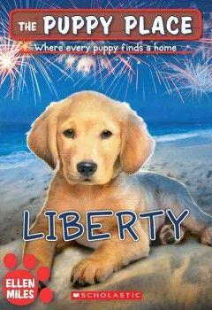When Liberty A Golden Retriever Puppy Runs Away From Her Family