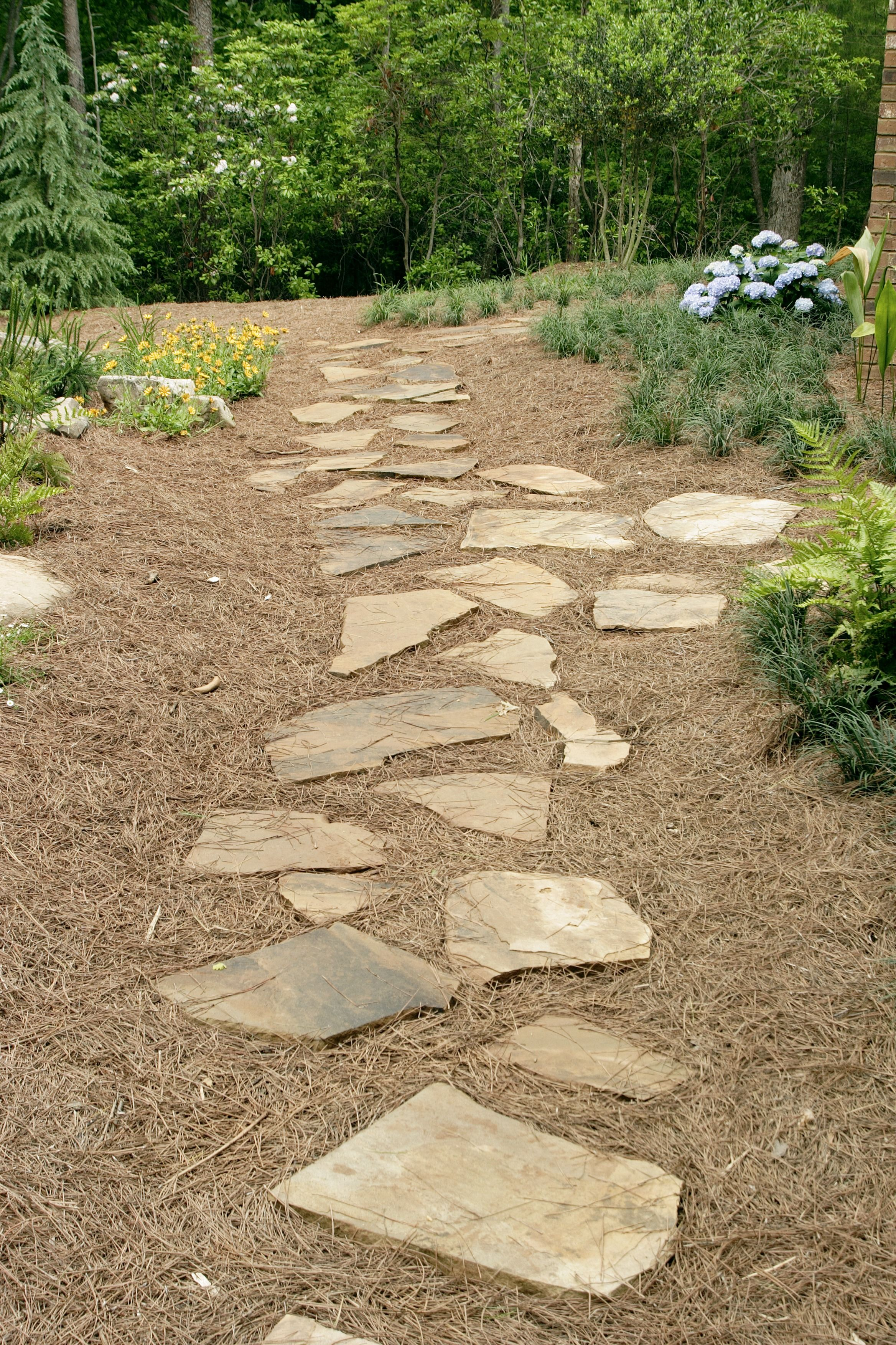 Landscaping Costs | Landscaping | Pinterest | Large backyard, Pine ...