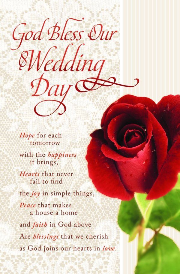 wedding programs with red rose on lace background wedding programs