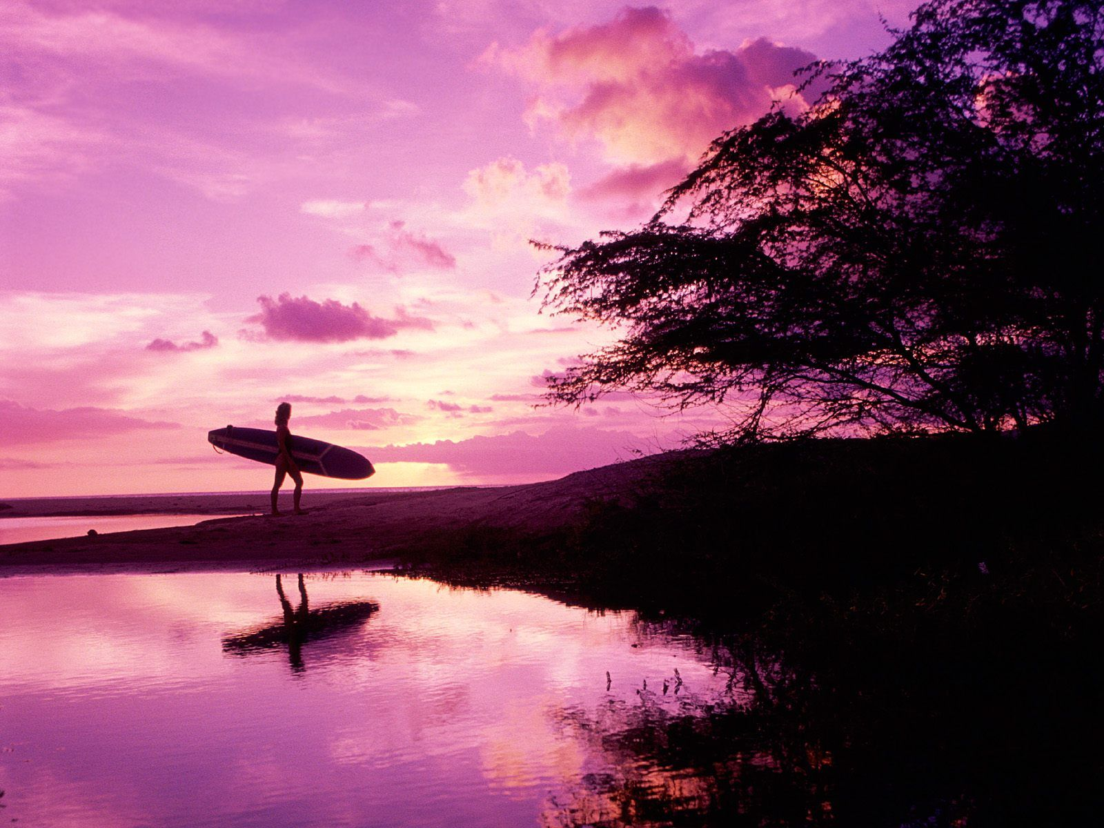 Surfer Girl Silhouette Sunset Wallpaper Maui Surfer Hawaii Wallpapers Pictures Photos And