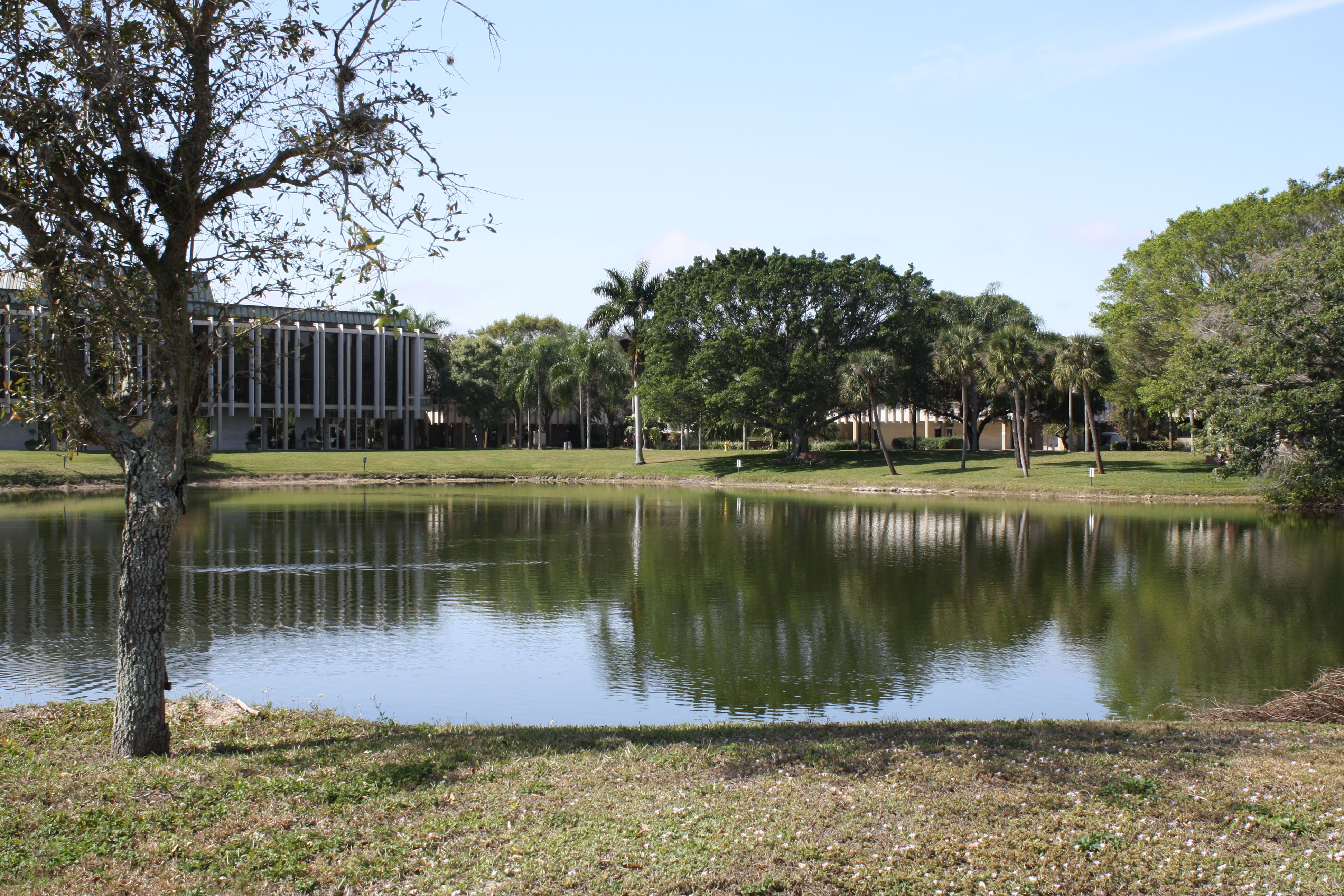 Pond on Thomas Edison campus | Campus, Pond, Life