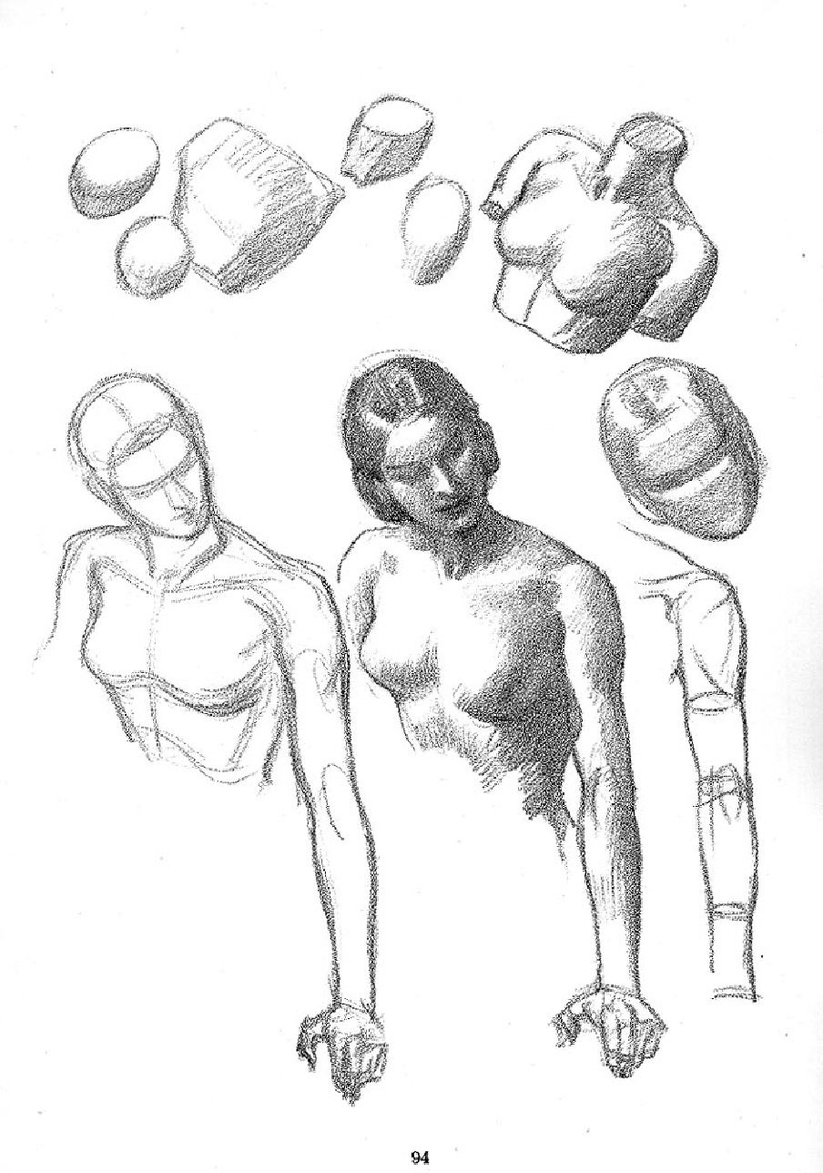 Andrew loomis drawing