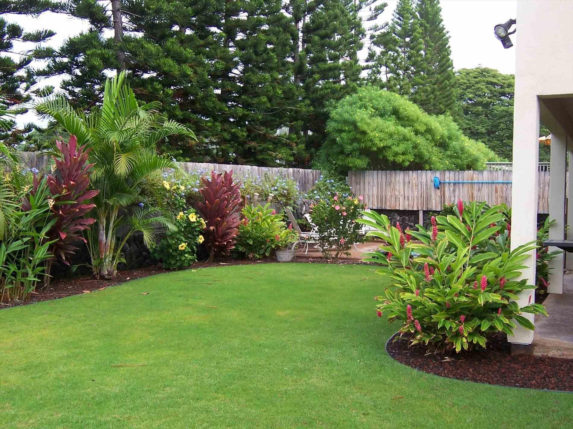 Florida Backyard Landscaping Ideas Luxury Florida