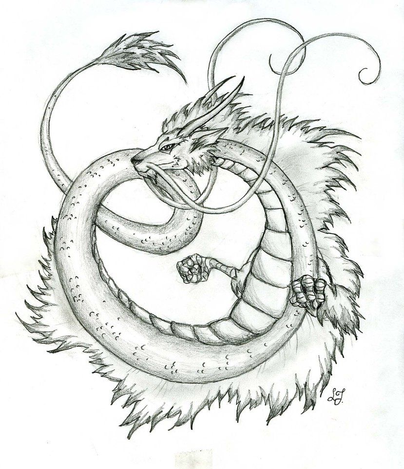 Find This Pin And More On Drawing Legendary Creatures Japanese Dragon