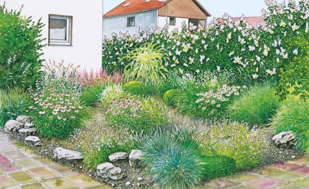 1 Garten 2 Ideen Neuer Schwung Fur Den Vorgarten Vorgarten Vorgartengestaltung Bepflanzung